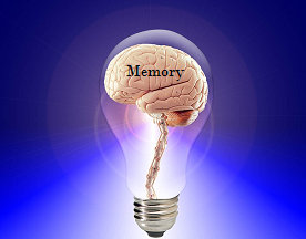 Cultivating Long Term Memory