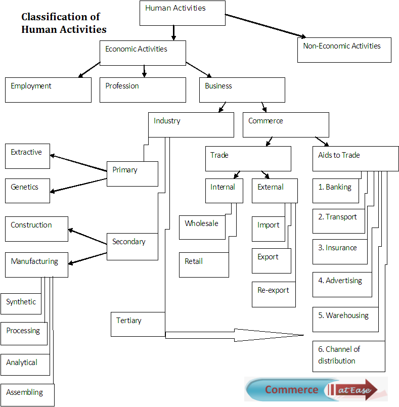 Classification of Human Activities